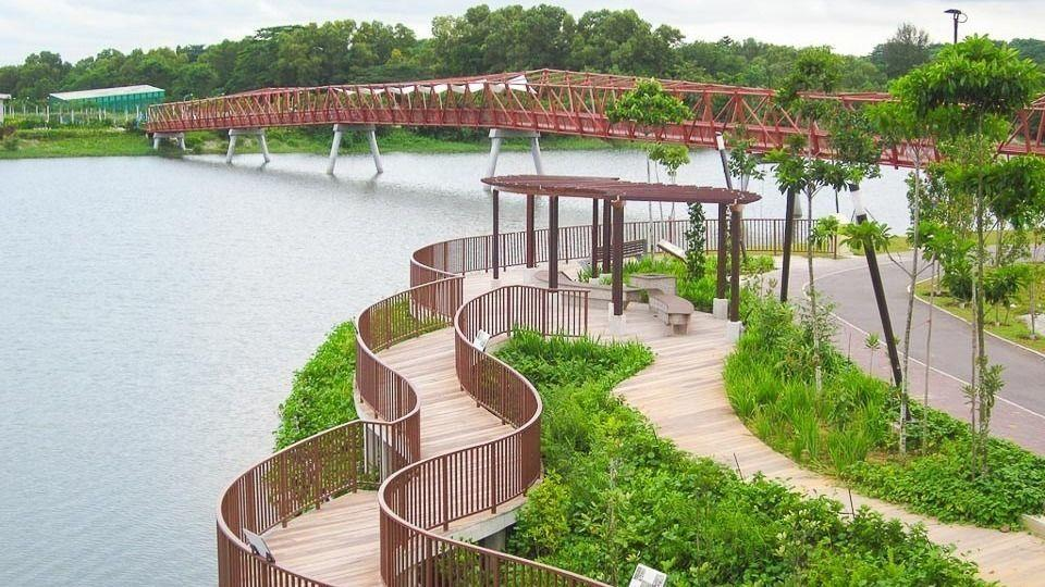 North-East Adventures w/ Coney Island & Lorong Halus Wetland (12km)
