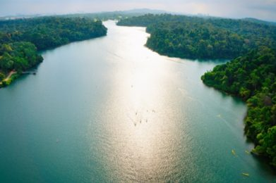 Aerial view of MacRitchie Reservoir in Singapore