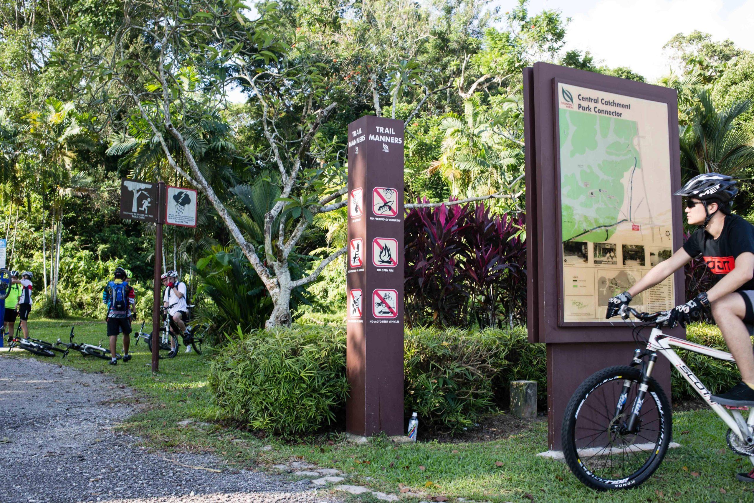 Kranji to Bukit Panjang w/ Mandai T15  Trail & Chestnut Park Observation Tower (14km)