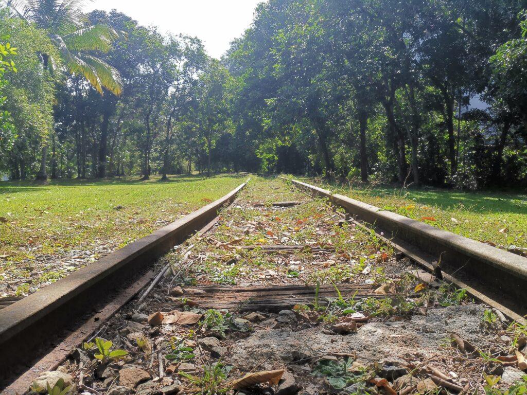 Sections of railway tracks along abandoned jurong railway line
