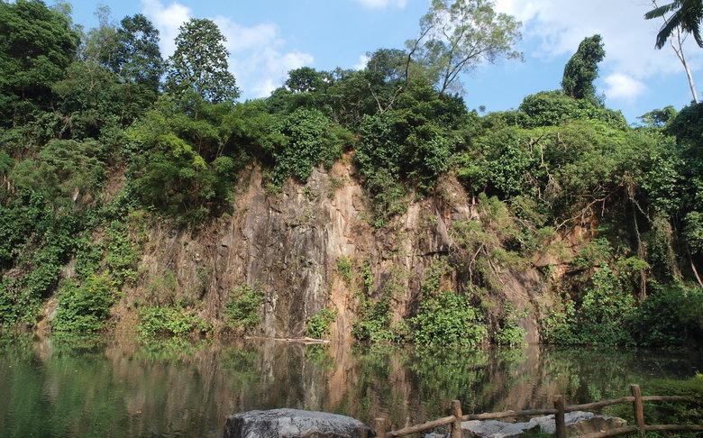 Bukit Batok Nature Park w/ WW2 Memorial & Abandoned Poh Kim Quarry (6km)