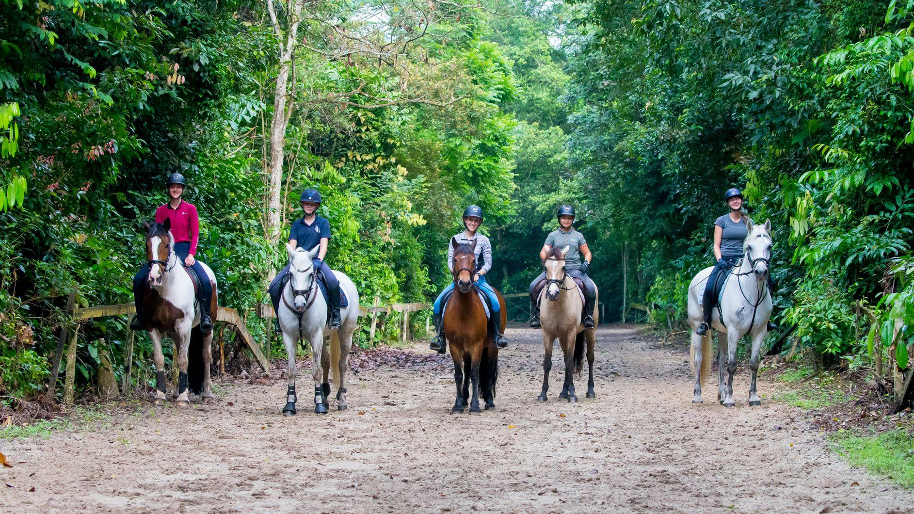horses with riders in Bukit Timah