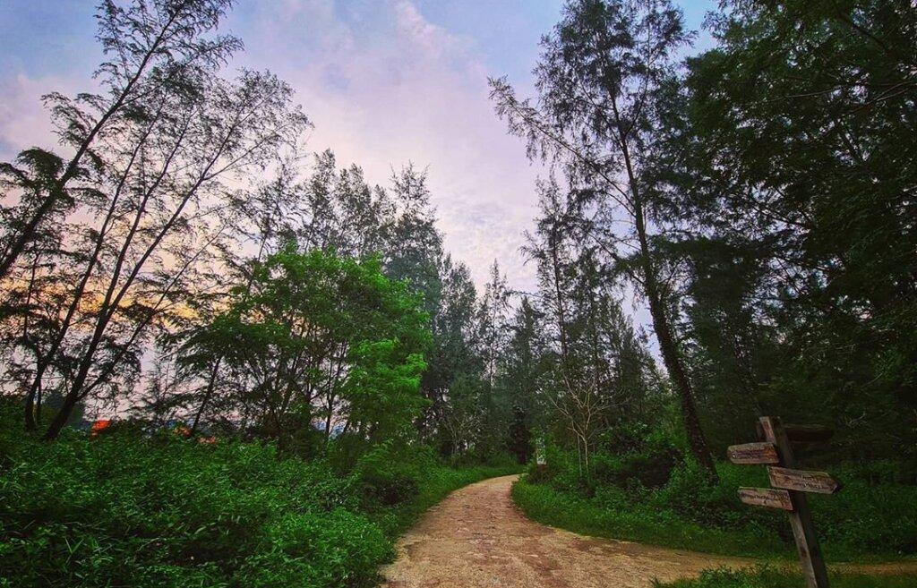 rugged path in coney island singapore