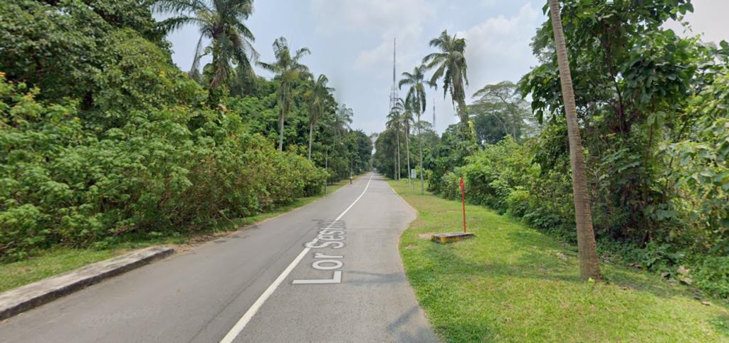 Lorong Sesuai at Bukit Batok nature park