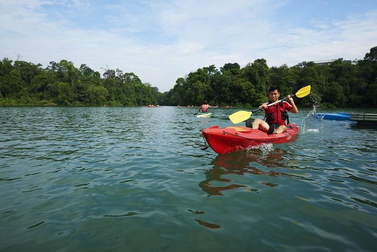 Kayakers kayaking in MacRitchie Reservoir