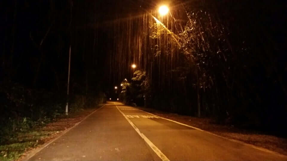 stretch of old upper thomson road at night