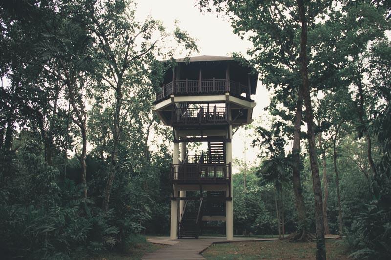 Pasir Ris Park Suicide tower