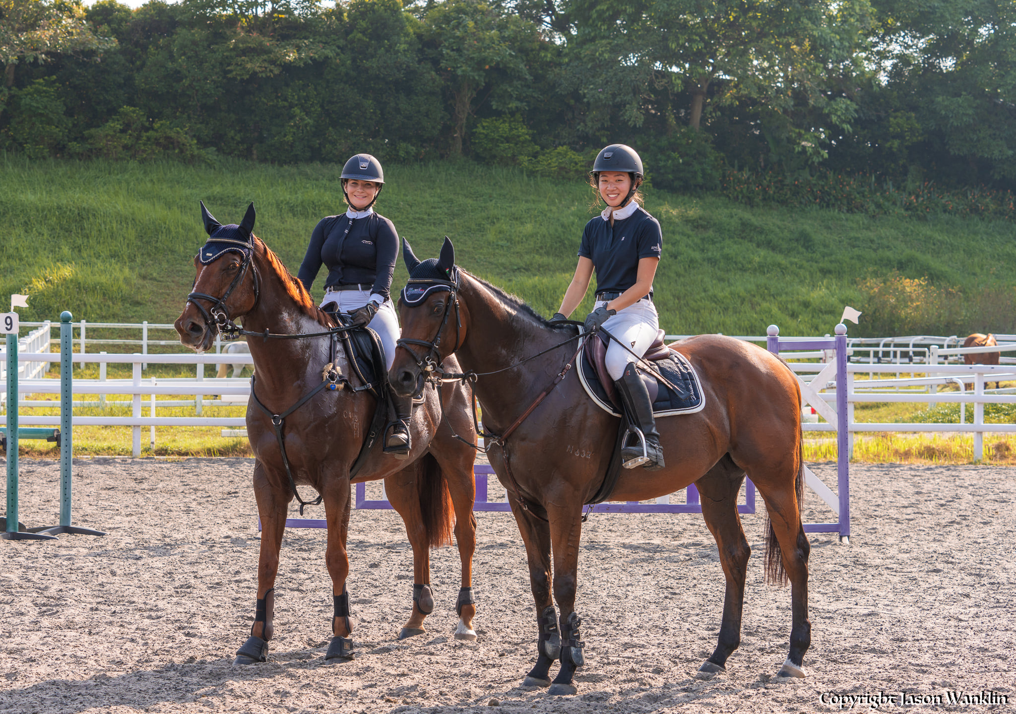 You are currently viewing The Ultimate Guide to Horse Riding in Singapore: Where to Learn and FAQs