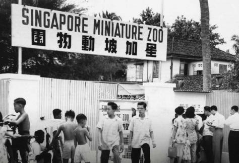 Singapore miniature zoo outside