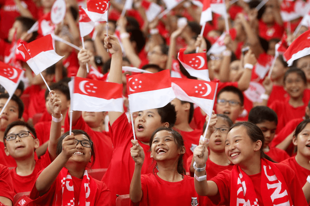 You are currently viewing An Almost 3 Star Singapore National Flag