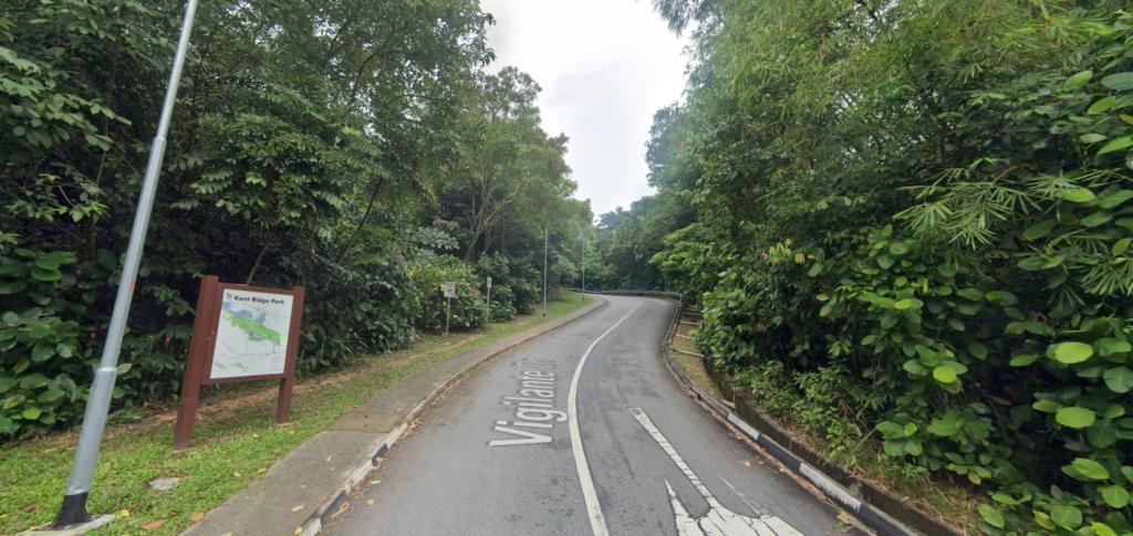 steep slope at Vigilante Drive