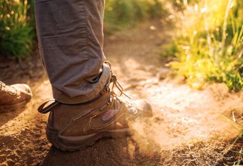 Salomon hiking boots under sunlight