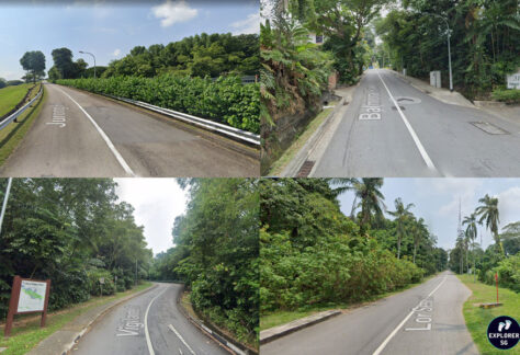 collage of steep slopes in Singapore